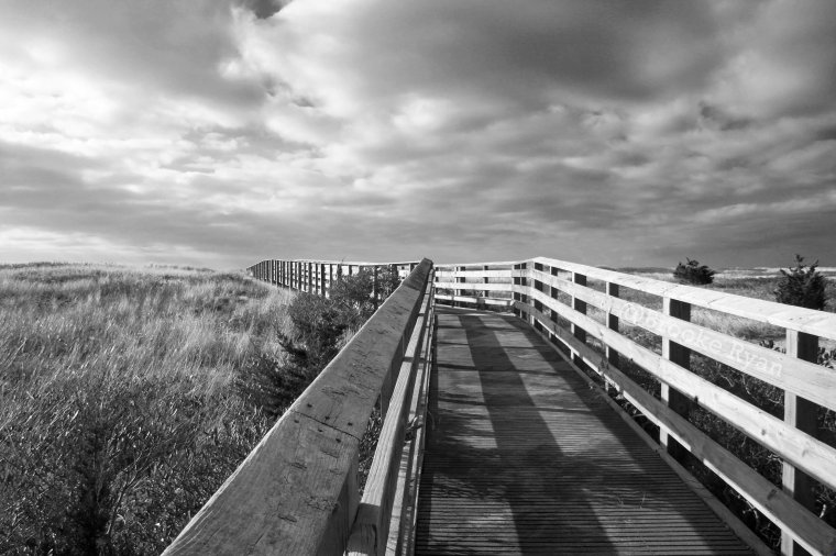 South Cape Beach Boardwalk